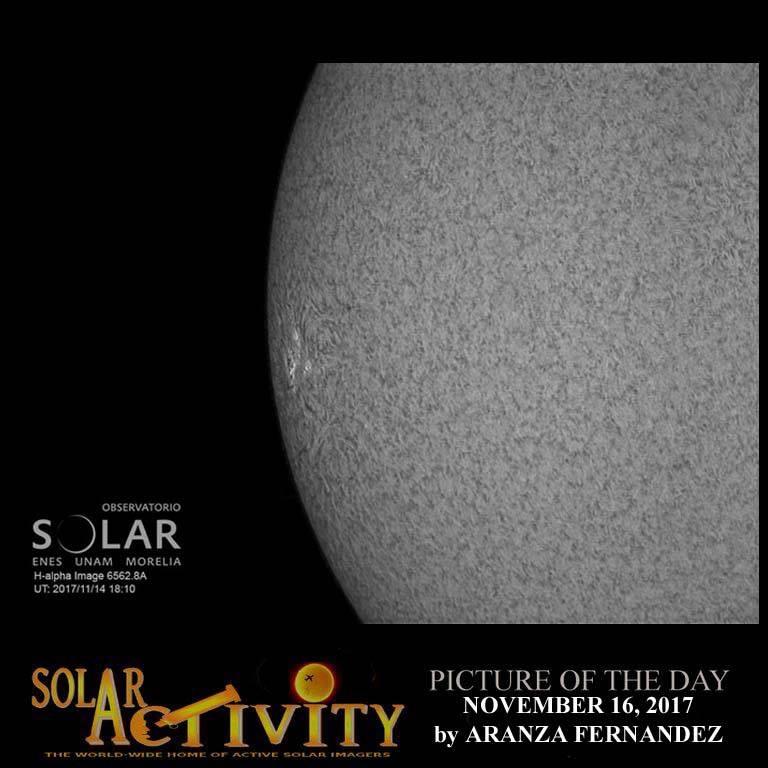 Sol LACIGE latest